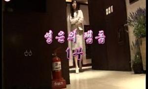 chinesefemdom (korean) 172